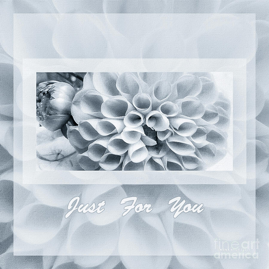 Nature Photograph - Dahlias Silver Gray Just For You by Mona Stut