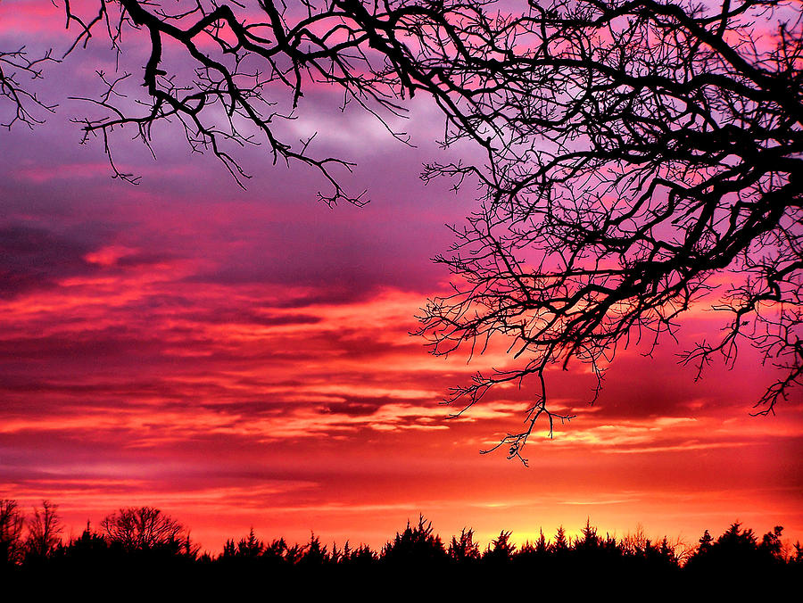 Sky Photograph - Simply Amazing by Karen M Scovill