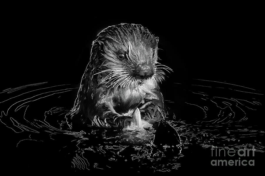 SIMPLY OTTER by Alice Cahill