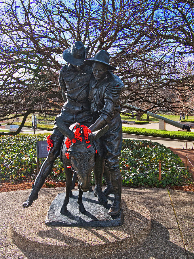 Canberra Photograph - Simpson And His Donkey - Canberra - Australia by Steven Ralser