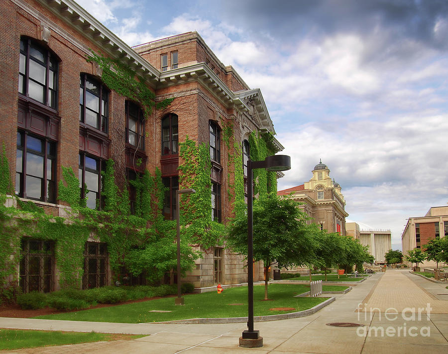 Syracuse Photograph - Sims Drive by Debra Millet