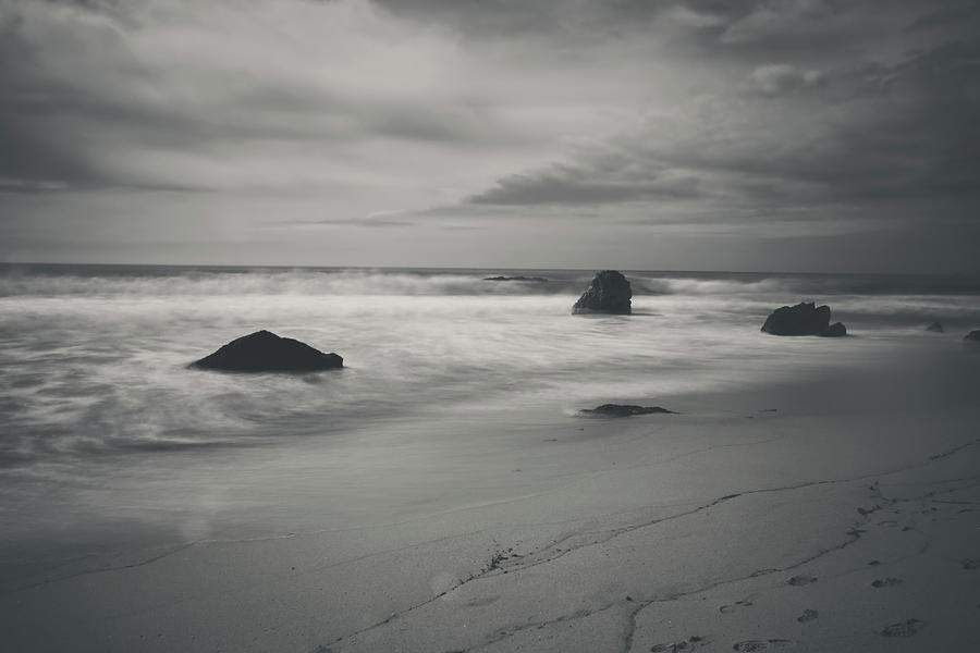 Garrapata State Park Photograph - Since Our Last Goodbye by Laurie Search