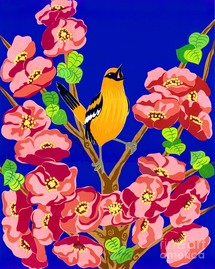 Nature Drawing - Singing Oriole by Lucyna A M Green