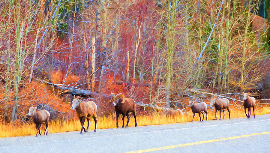 Single File for Safety by Judy Wright Lott