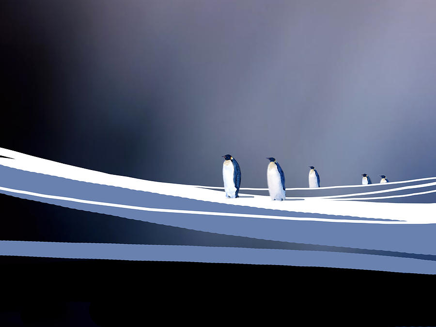 Birds Painting - Single File by Paul Sachtleben