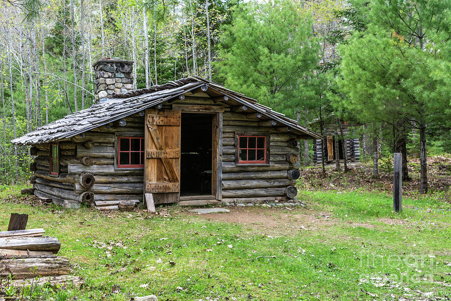 Single log cabin stands in the forest with the door open by Daniel Ryan