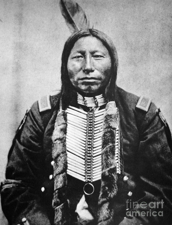 19th Century Photograph - Sioux: Crow King by Granger