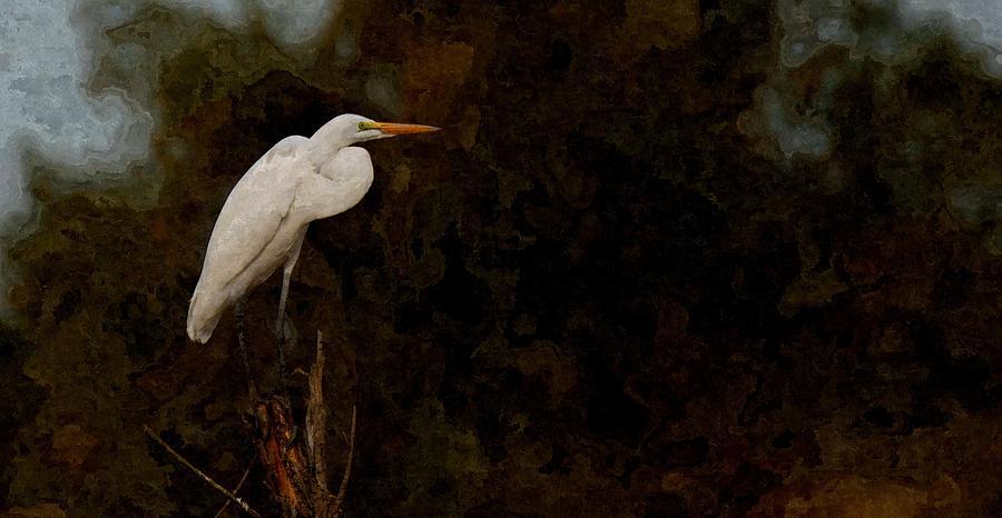 Sir Egret by Nick Knezic