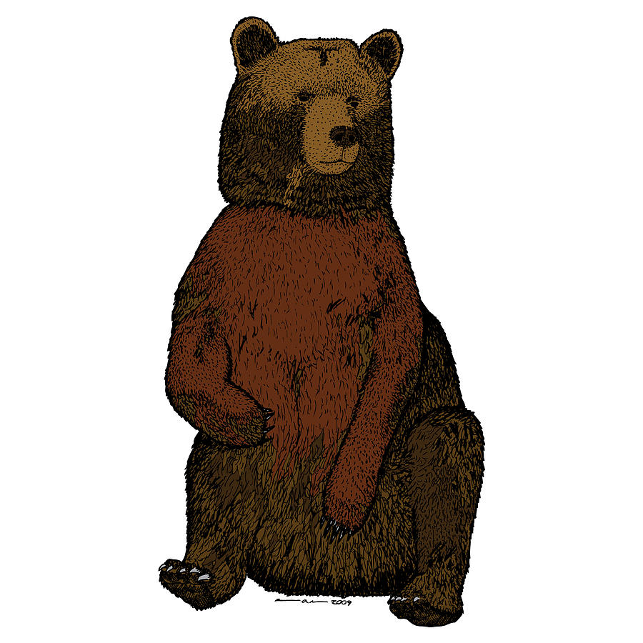 Drawing Drawing - Sitting Bear - Full Color by Karl Addison