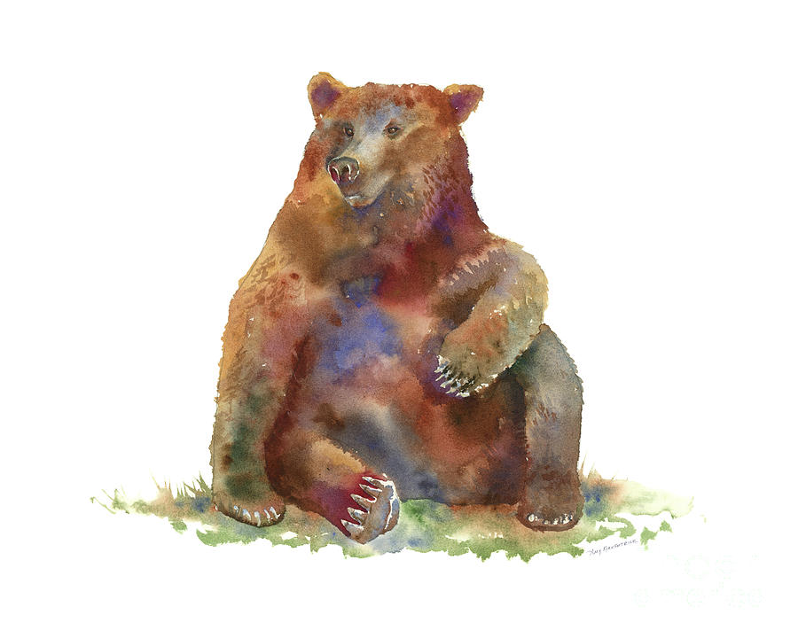 Sitting Bear by Amy Kirkpatrick