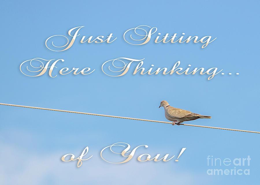 Sitting Here Thinking of You by Mechala Matthews