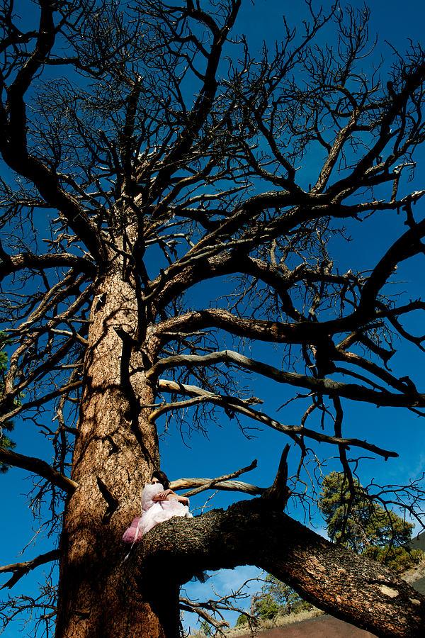 Pink Dress Photograph - Sitting In Tree 2 by Scott Sawyer