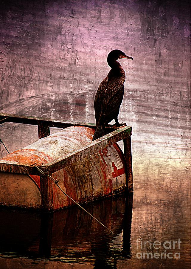 Sitting On The Dock Of The Bay Photograph