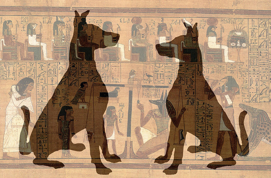 Dogs Digital Art - Sitting Proud Dogs and Ancient Egypt by Karla Beatty
