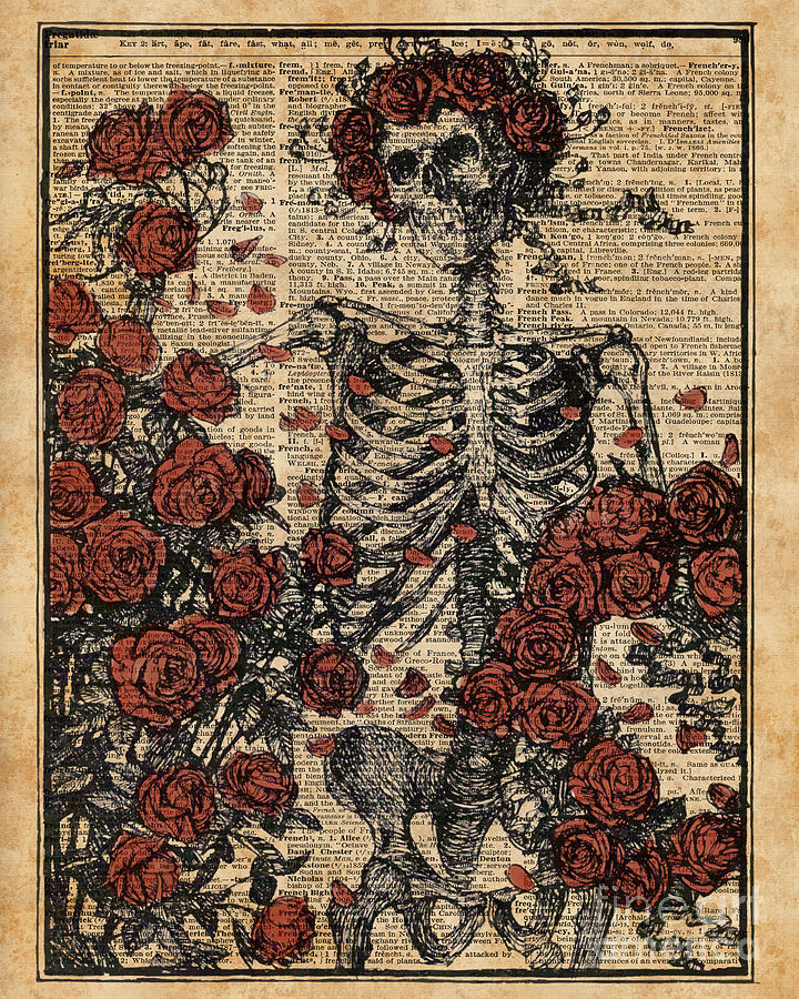 Skeleton Art Skeleton With Roses Book Arthuman Anatomy Digital Art