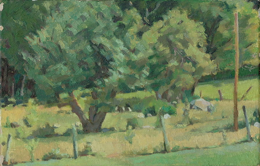 Skowhegan Orchard  by Sperry Andrews