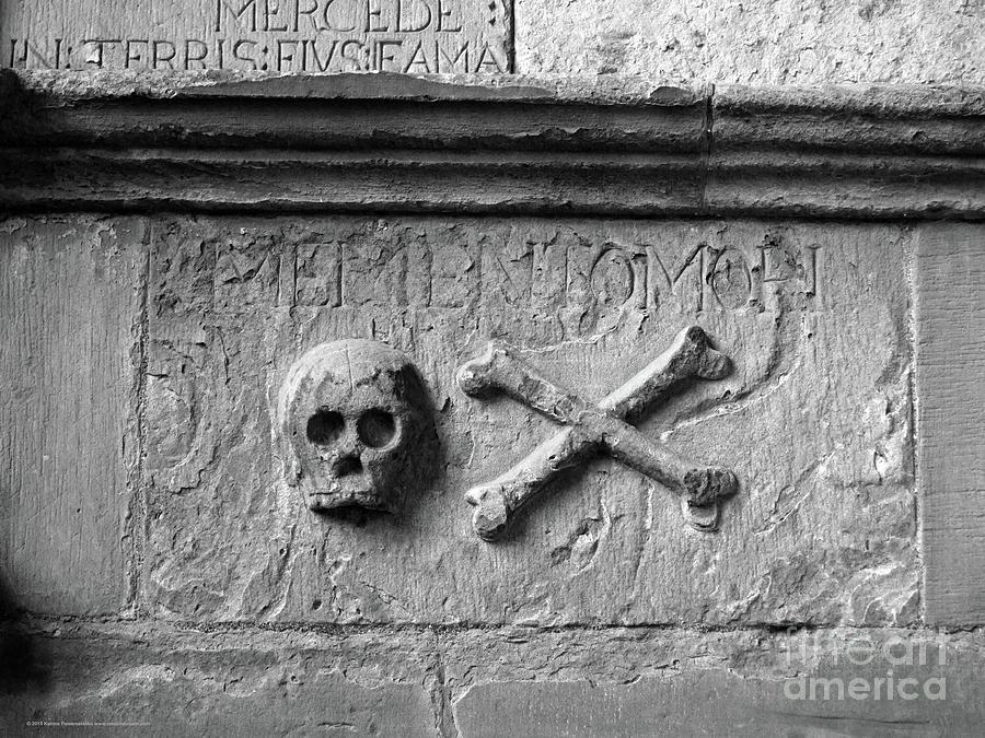 Skull Photograph - Skull And Crossbones by Katrina Perekrestenko