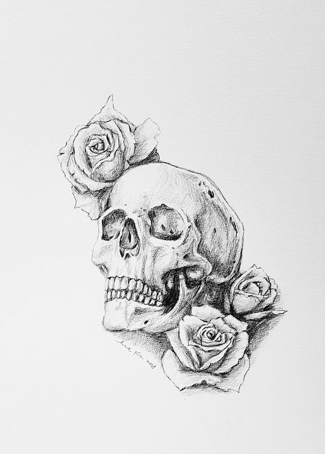 It is an image of Fabulous Rose And Skull Drawing