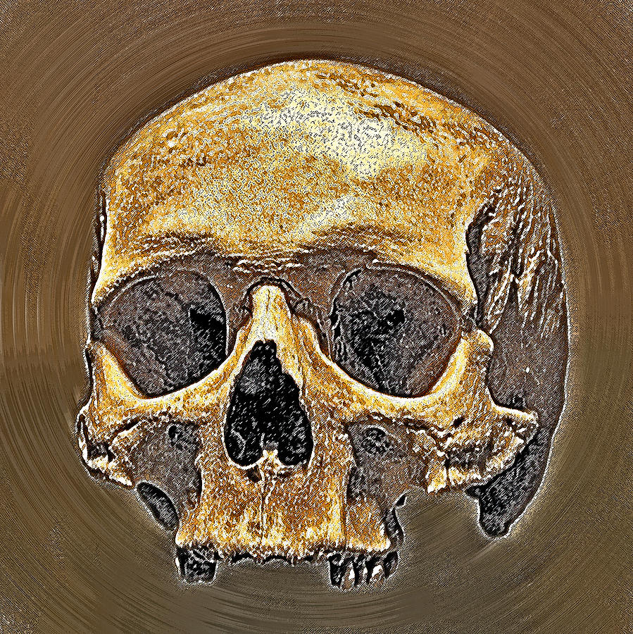 Sedlec Ossuary Photograph - Skull. by Andy Za