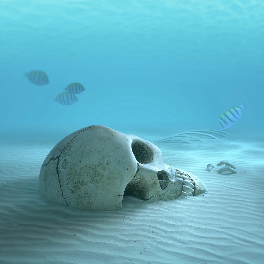 Skull On Sandy Ocean Bottom Photograph