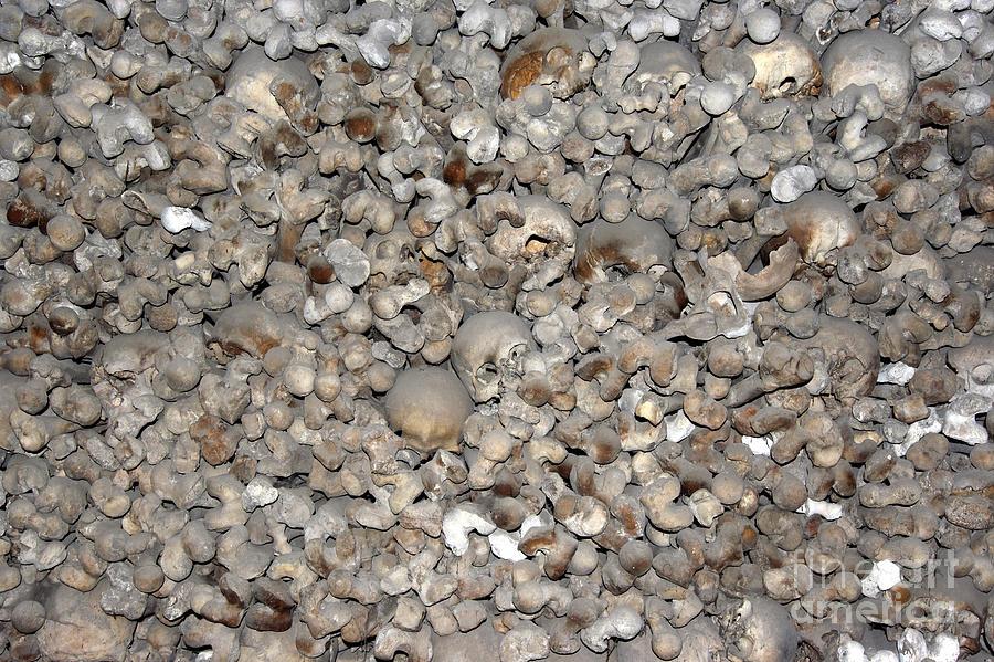 Charnel House Photograph - Skulls And Bones by Michal Boubin