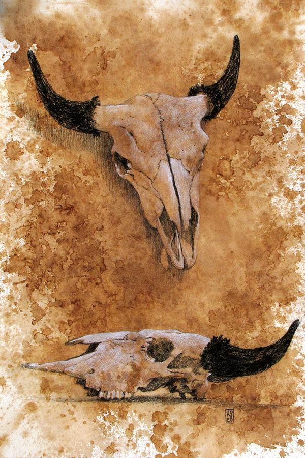 Coffee Stain Drawing - Skulls by Debra Jones