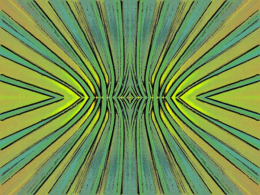 Abstract Digital Art - Skweezy 2 by Arnuda