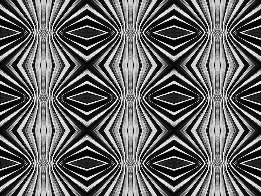Abstract Digital Art - Skweezy 6 by Arnuda