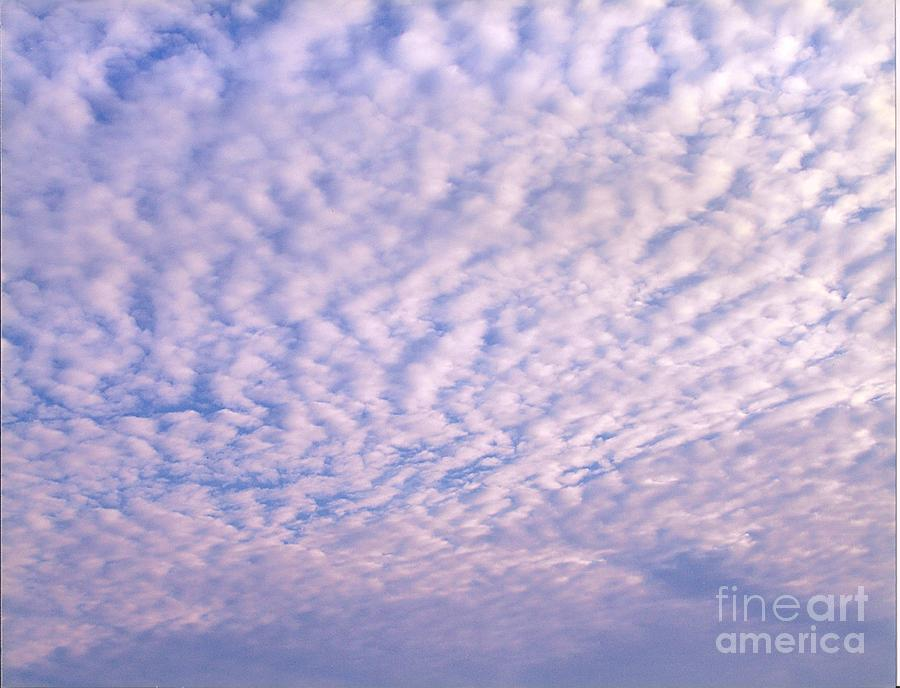 Sky 4 Painting by Rod Ismay