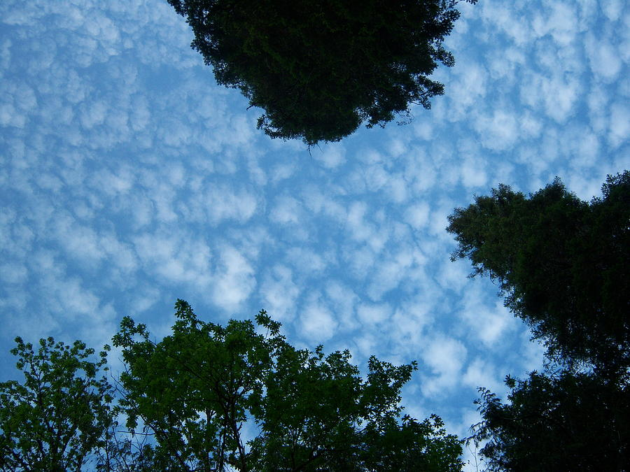 Sky Photograph - Sky Above Me by Ken Day