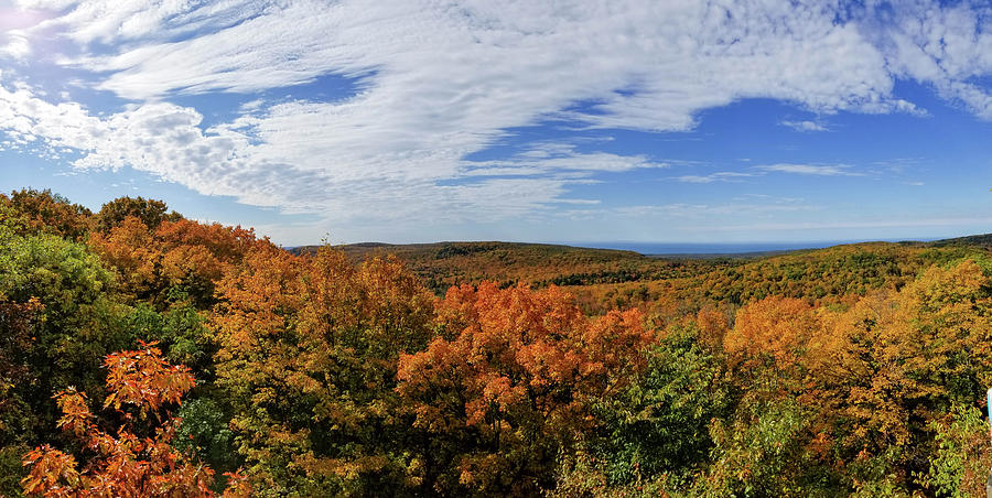 Porcupine Mountains Photograph - Sky And Trees by Brian Wimmer