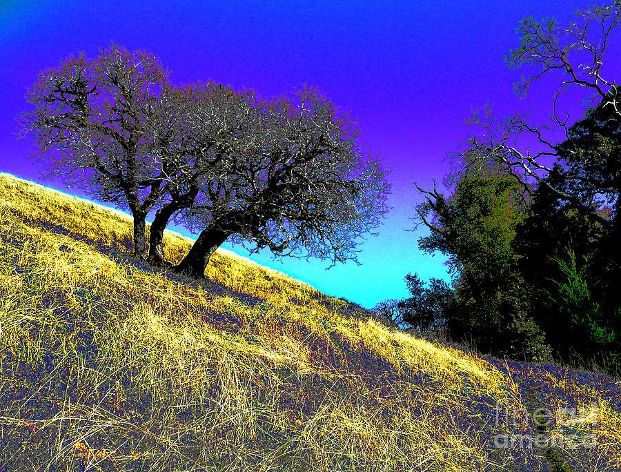 Blue Sky Photograph - Sky Burning Blue by JoAnn SkyWatcher
