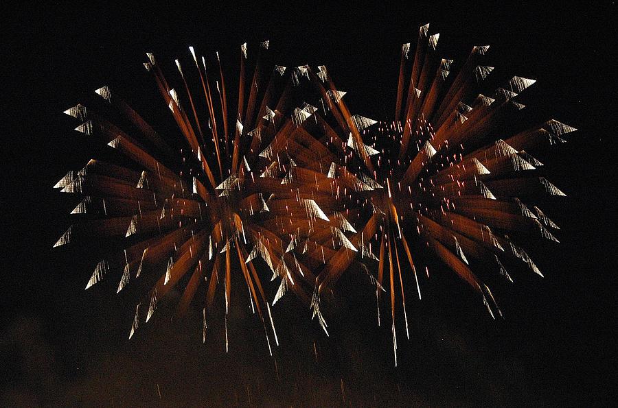 Fireworks Photograph - Sky Flowers Lll by Dan Fulk