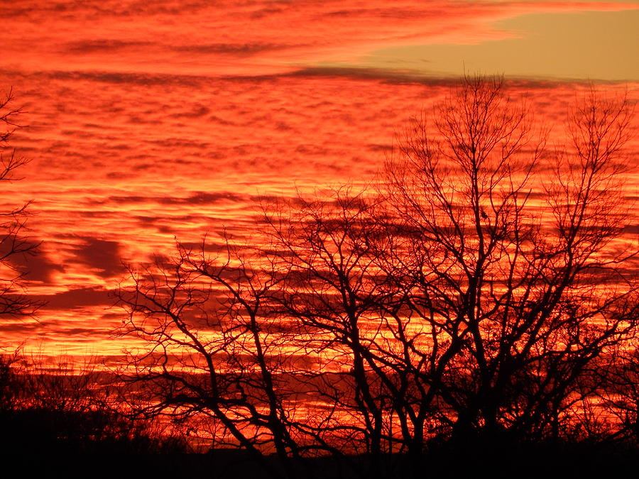 Sunset Photograph - Sky On Fire by Diana West