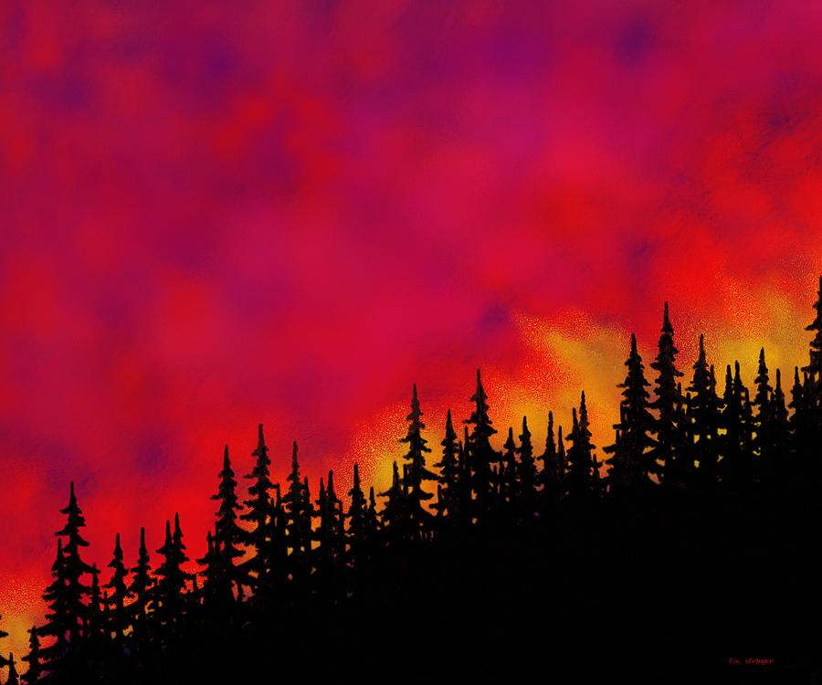 Forest Painting - Sky On Fire by Tim Stringer