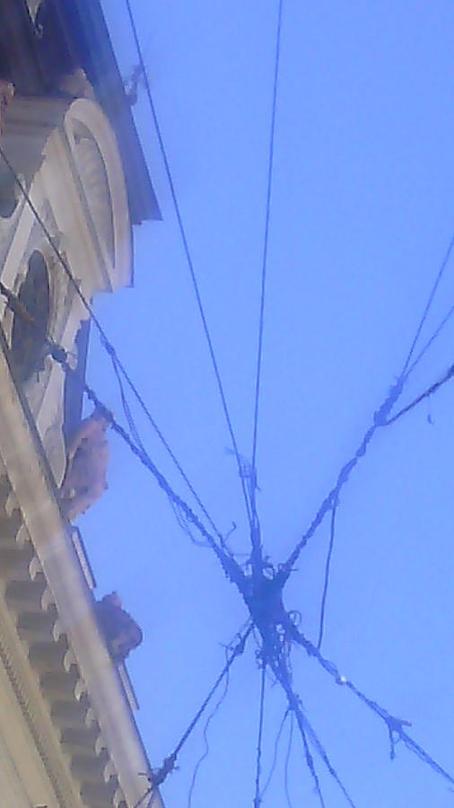 Sky Photograph - sky seen throu wires in Belgrade by Anamarija Marinovic