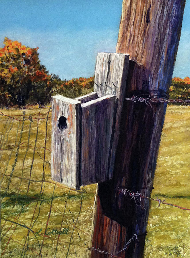 Birdhouse Pastel - Sky View by Laura Cottrell