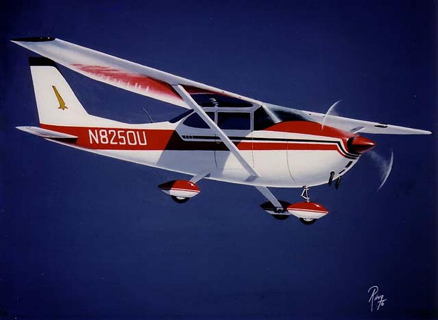 Cessna Painting - Skyhawk by Peter Ring Sr