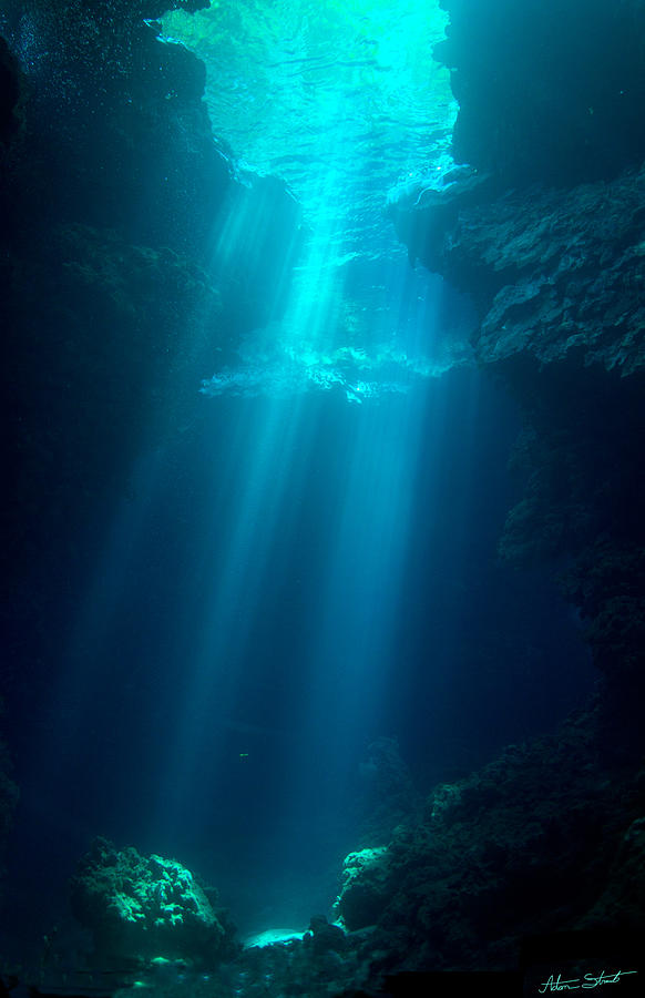 Diving Photograph - Skylight by Mumbles and Grumbles