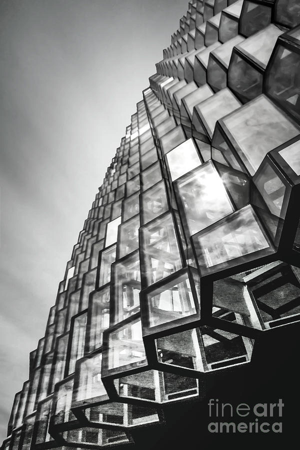 Skylight Heights Photograph