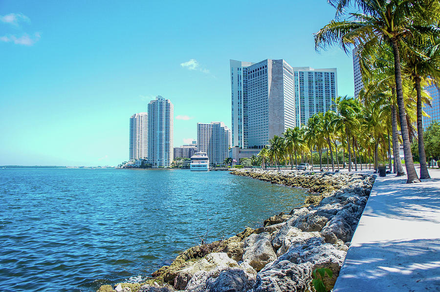 Skyline And Bayfront Park, Miami, Florida