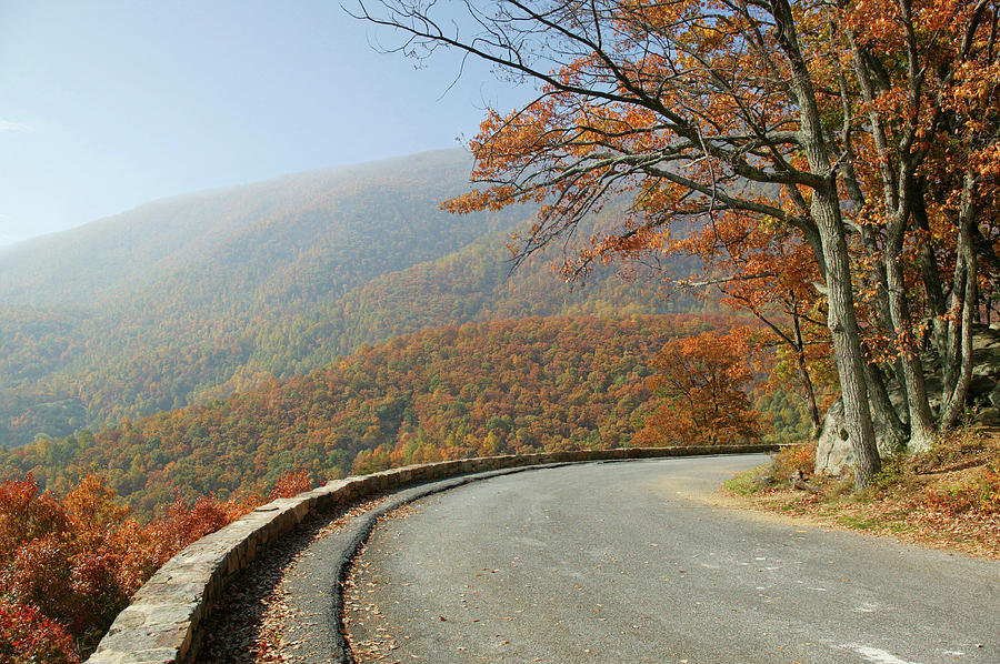 Skyline Drive Photograph - Skyline Drive I by Guy Crittenden