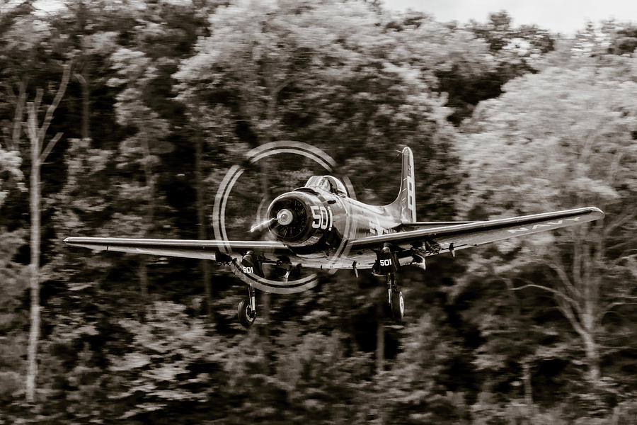 Skyraider Black and White by Liza Eckardt