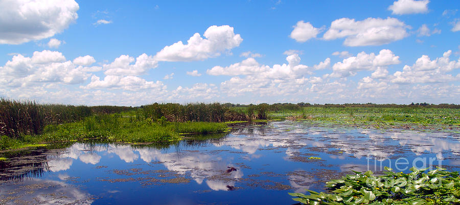 Skyscape Reflections Blue Cypress Marsh Conservation Area Florida C3 Photograph by Ricardos Creations