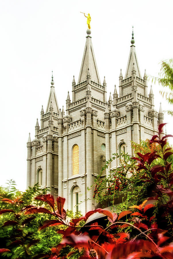 Religious Photograph - Slc Temple Angle by La Rae  Roberts