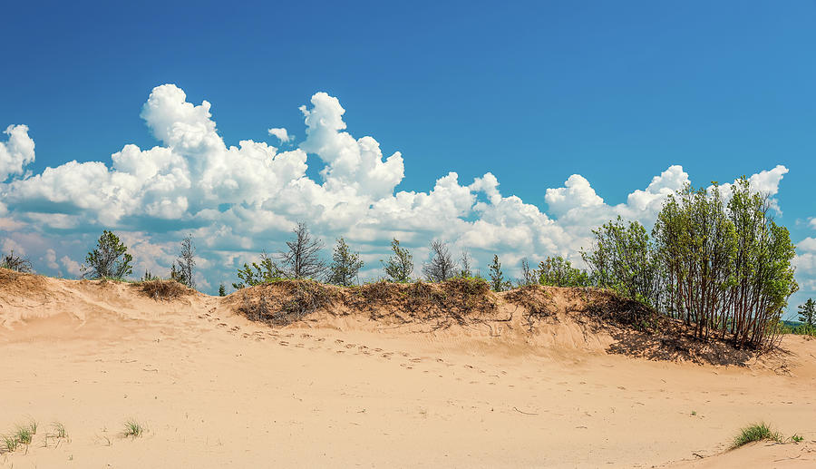 Sleeping Bear Sand Dune Footprints by Dan Sproul