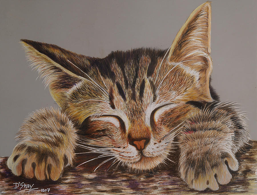 Tabby Painting - Sleeping Beauty by Don MacCarthy