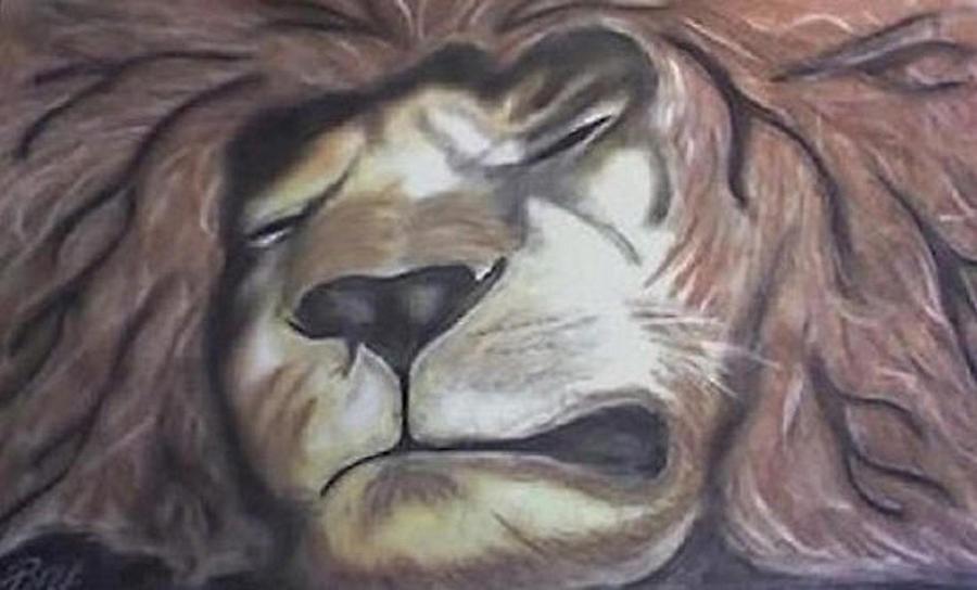 Lion Drawing - Sleeping King by Brad Hutchings