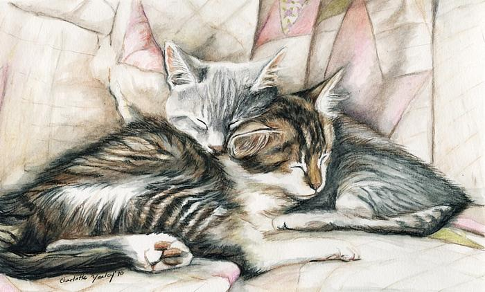 Cat Painting - Sleeping Kittens by Charlotte Yealey