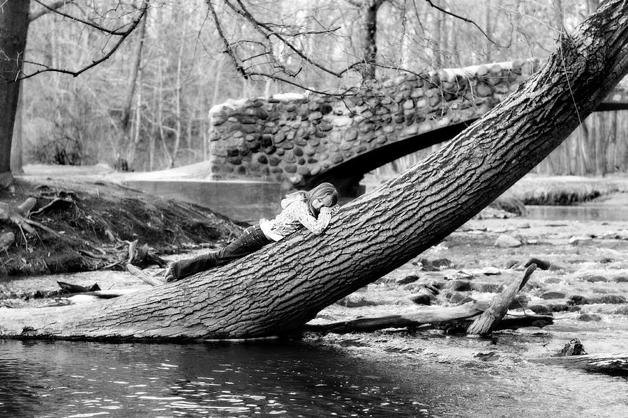 Tree Photograph - Sleepy Tree by Kelly  Burke